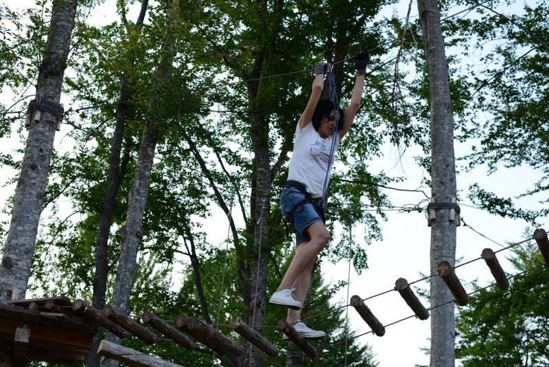 Tree climbing2